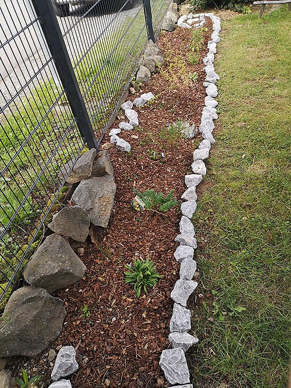 BLumen für unser Blumenprojekt
